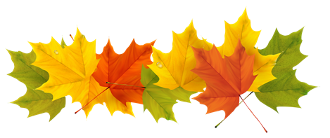 Fall leaves graphic